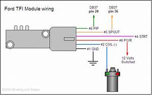 Ford Ranger Ecu Wiring Diagram