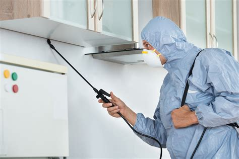 eliminate unwanted pests  hiring  pest control company