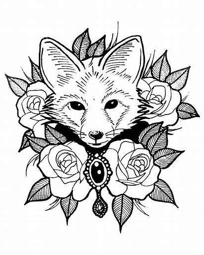 Coloring Fox Roses Foxes Head Leaves Pages