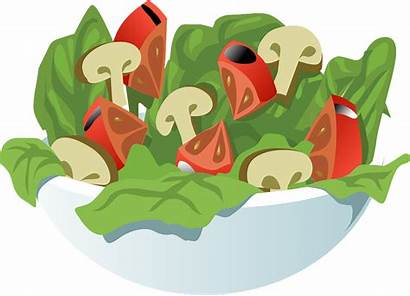 Salad Healthy Vegetables Meal Pixabay Vector Vegetarian