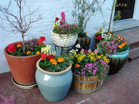 ideas container 5 gardening ideas for small spaces with limited area