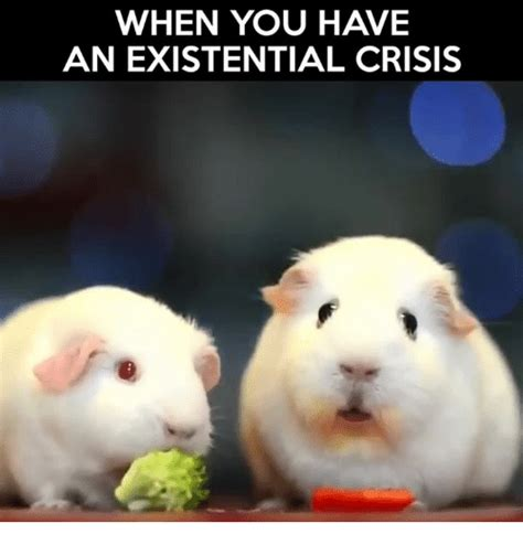 Existential Memes - when you have an existential crisis meme on sizzle