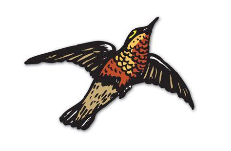robin flying drawing