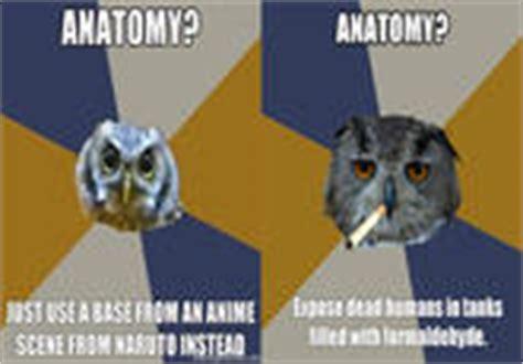 Art Student Owl Meme - image 394187 art student owl know your meme