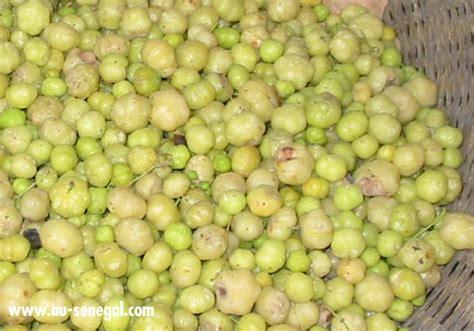 jujube en cuisine les fruits du sénégal au sénégal le cœur du sénégal