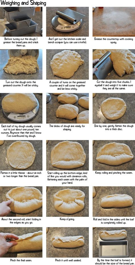 bread with yeast step by step whole wheat bread step by step
