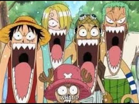 luffy   stupid  piece funny moment youtube