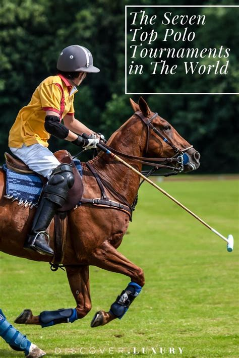 horse sports luxury polo tournaments list sport
