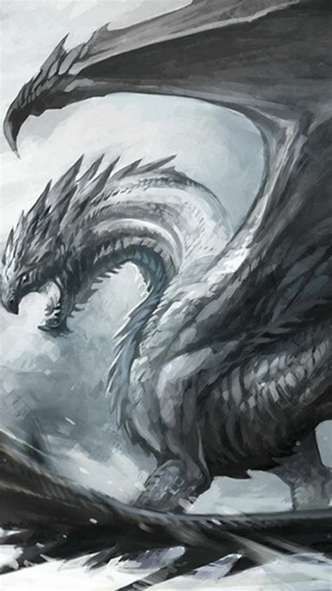 black  white dragon wallpaper  images