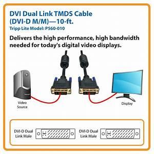 Amazon Com  Tripp Lite Dvi Dual Link Cable  Digital Tmds