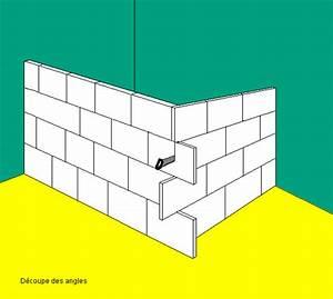 Dimension Carreau De Platre : monter un mur ou une closison ~ Dailycaller-alerts.com Idées de Décoration