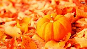 Free Fall Wallpapers with Pumpkins - WallpaperSafari