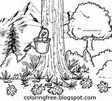 Maple Syrup Printable Coloring Drawing Natural Tree Pages Countryside Drawings Canadian Colouring Bucket Canada Clipart Tap Getdrawings Sheets Worksheet Bottle sketch template