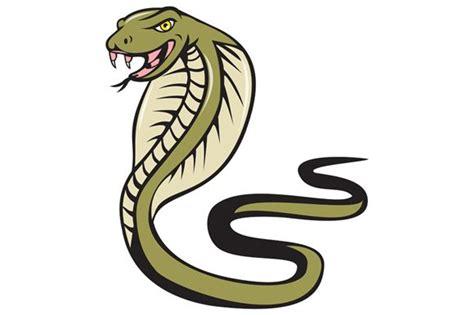 Cobra Viper Snake Attacking Cartoon