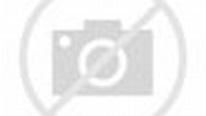 Female half-orc Garona character Warcraft movie wallpapers ...