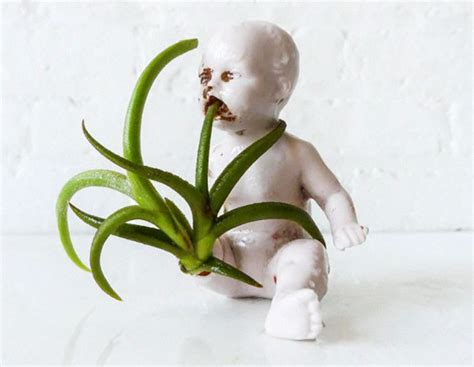 people  turned  dolls  planters  scared