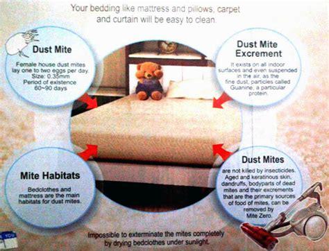 Mücken Im Zimmer Loswerden by Wie Loswerden Spinnen Im Schlafzimmer Wohnzimmer M 246 Bel
