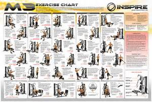 inspire M3 chart exercise Ejercicio Fitness Pinterest