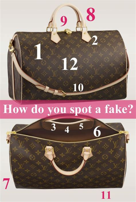 spot  fake louis read   tips  find outrepin bypinterest  ipad