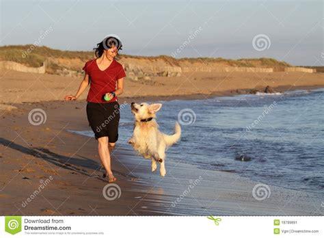 girl  dog running  beach stock image image