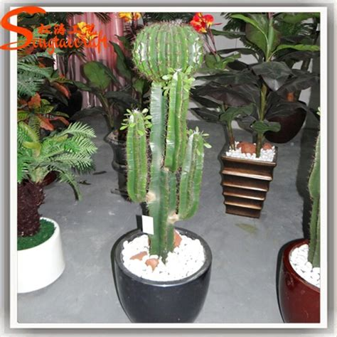 wholesale outdoor grafted cactus plants artificial