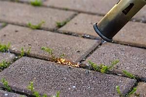 Unkraut Zwischen Pflastersteinen Entfernen : unkraut einfach und umweltfreundlich entfernen ~ Michelbontemps.com Haus und Dekorationen