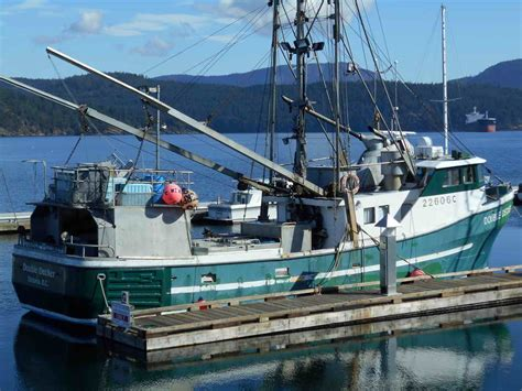 Tuna Fishing Boat For Sale Florida by Pelagic Commercial Tuna Boat