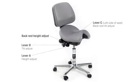 back rehabilitation and special needs adjusting your bambach saddle seat