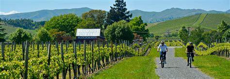 zealands marlborough wine region  worth  visit