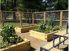 Beautiful Backyard Garden House Design With Wood Raised