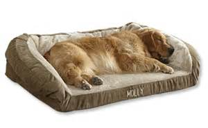 tempur pedic dog bed orvis tempur pedic 174 deep dish dog