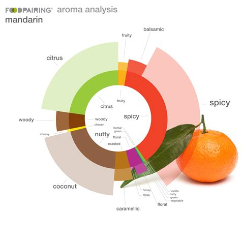 foodpairingde   great site  checking  flavor
