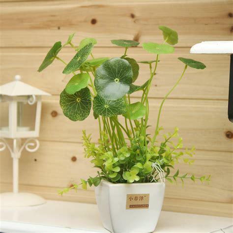 koin rumput mini dekorasi bonsai meja kantor bunga buatan
