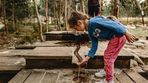 nature play water fun   awesome lizard log