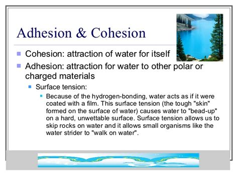 Unique Properties Of Water