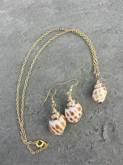 Shell Jewelry Salty Necklace