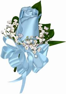 Light Blue Rose Decoration Transparent Clipart | Flower ...