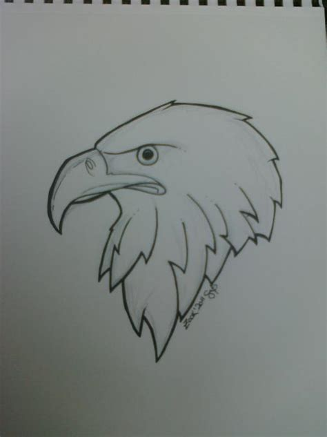 eagle nature drawings pictures drawings ideas  kids