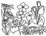 Coloring Garden Pages Flower Print Printable Flowers Spring Sheets Butterfly sketch template