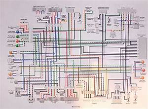 Wiring Diagram  Scrambler  Carbs