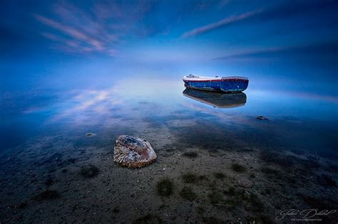 jellyfish lava l peaceful by jd photographie