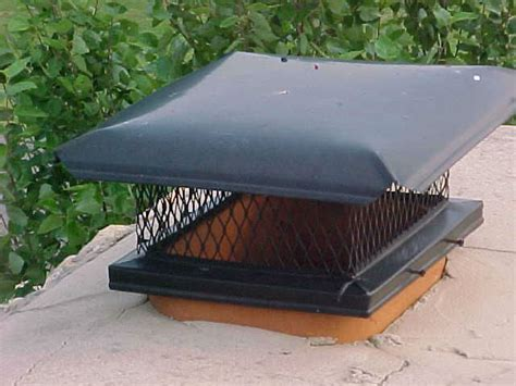 Your Chimney And Bird Screens