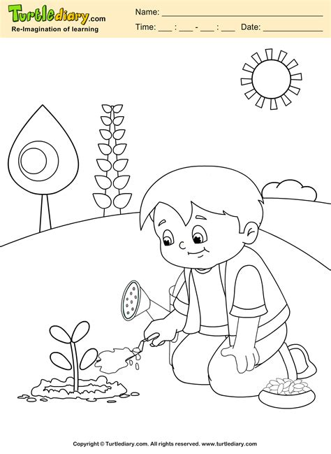 plant coloring pages grow plant coloring sheet turtle diary