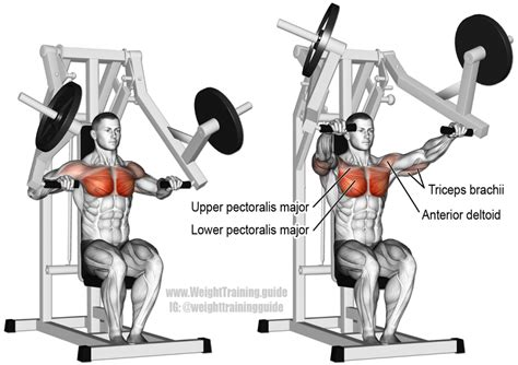 Barbell Flat Bench by Machine Chest Press Exercise Instructions And Video