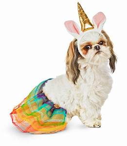 14 Best Halloween Costumes For Dogs