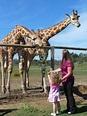 Werribee Open Range Zoo: Top Tips Before You Go   UPDATED 2017