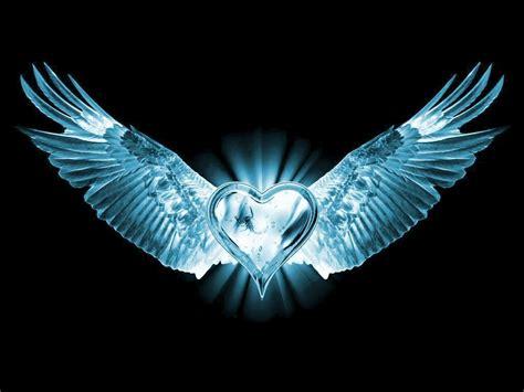wings  love  heaven  earth