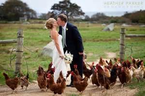 farm wedding martha s vineyard wedding photography boston wedding photographer the knot best