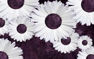 4 Free Purple Daisy Tumblr Backgrounds | ibjennyjenny ...