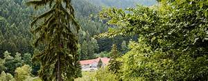Bilder Vom Wald : ferienpark th ringer wald ~ Yasmunasinghe.com Haus und Dekorationen
